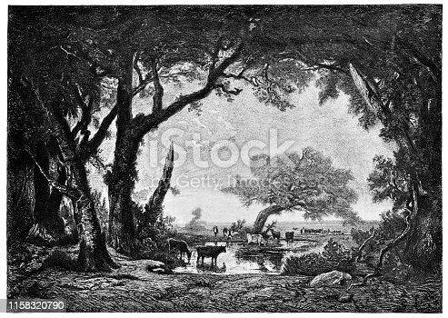 Edge of the Forest at Fontainebleau by Etienne Pierre Theodore Rousseau (circa 19th century). Vintage etching circa late 19th century.