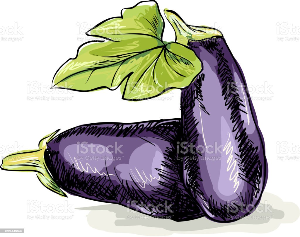 Eggplant royalty-free eggplant stock vector art & more images of doodle