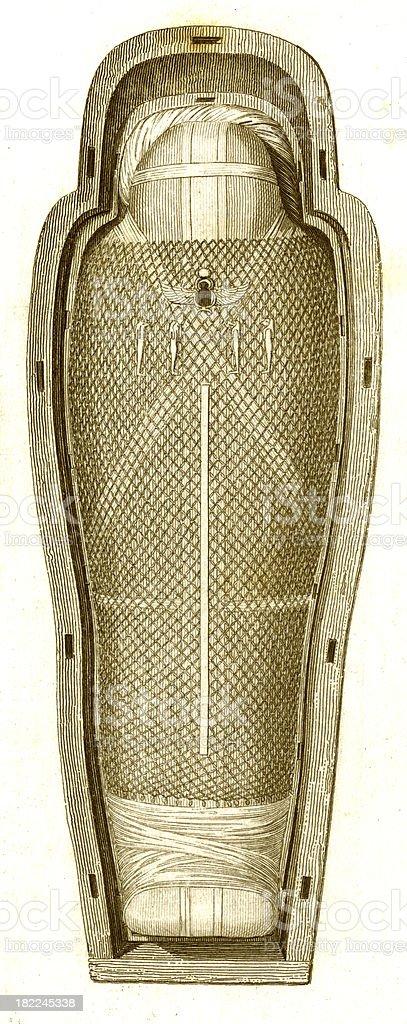 Egyptian Mummy | Antique History Illustrations royalty-free stock vector art