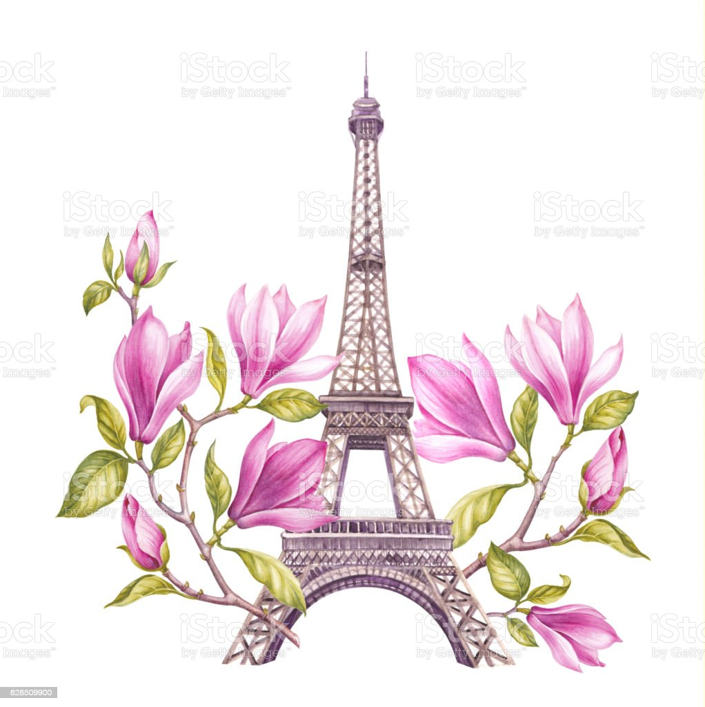 Eiffel Tower With Spring Flowers Are Isolated Over The White