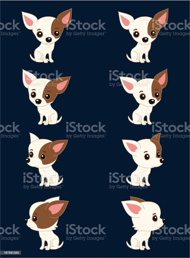 Eight poses of chihuahua vector art illustration