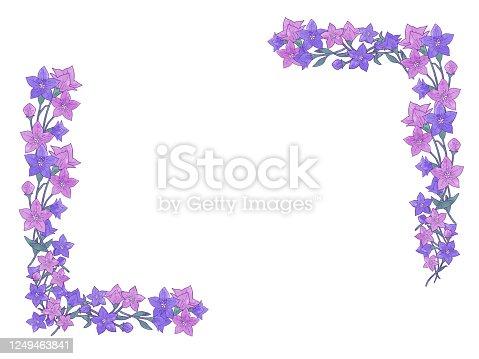 Elegant and cute bellflower frame material illustration