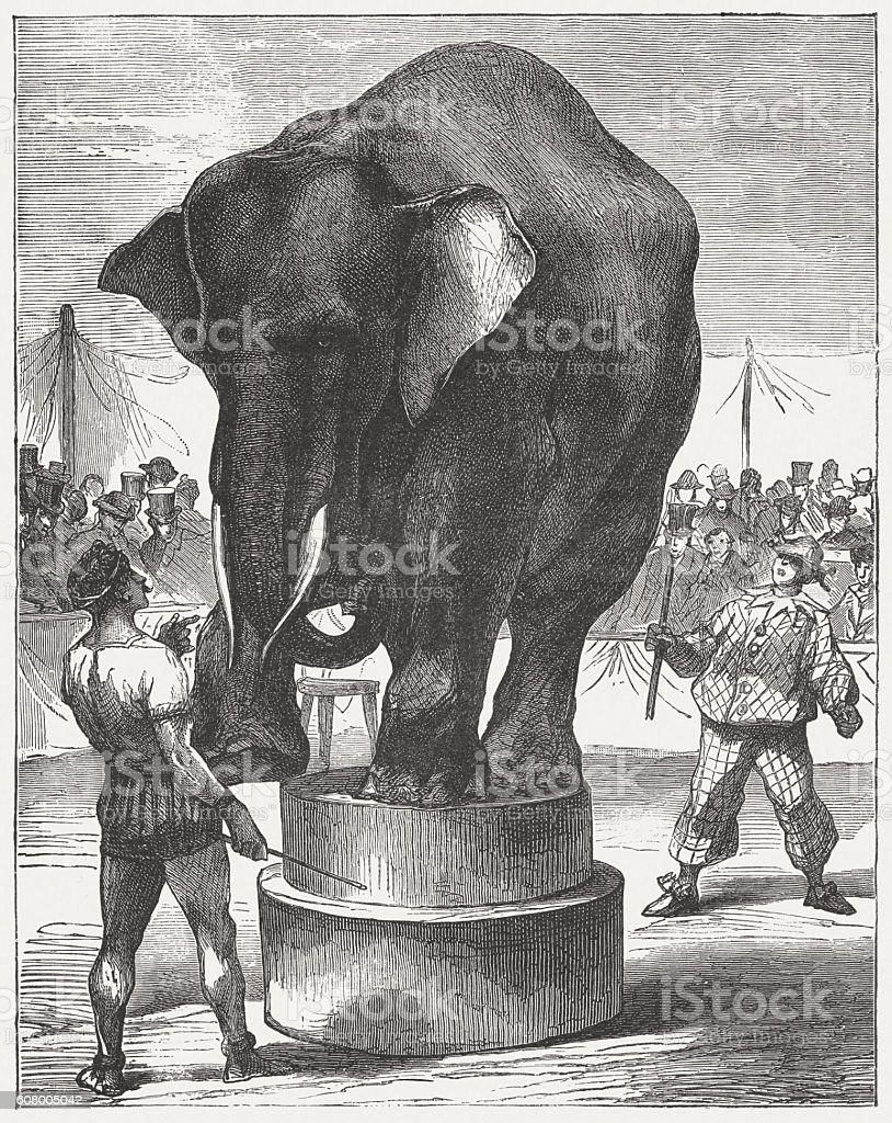 Elephant, Artist and Clown in the circus, published in 1877 vector art illustration