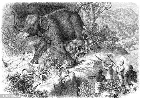 Elephant hunting in the Ethiopian Empire, which was historically known as Abyssinia Original edition from my own archives Source :