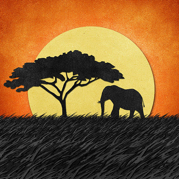 bildbanksillustrationer, clip art samt tecknat material och ikoner med elephant in safari field recycled paper background - single pampas grass