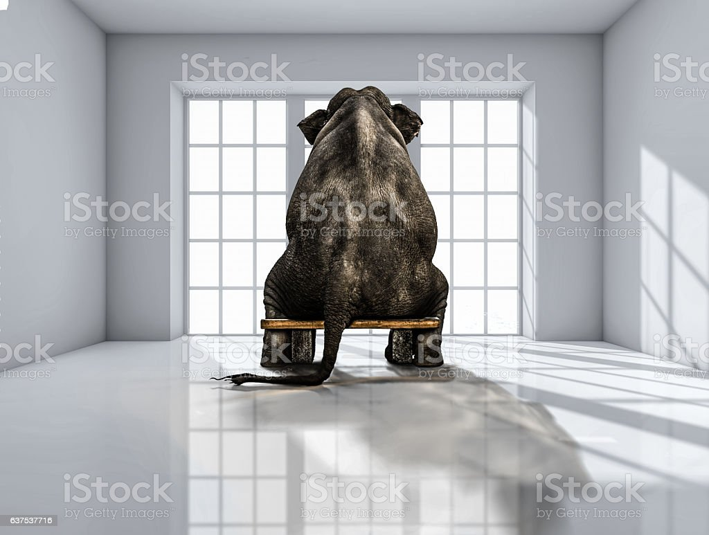 elephant sitting on chair vector art illustration