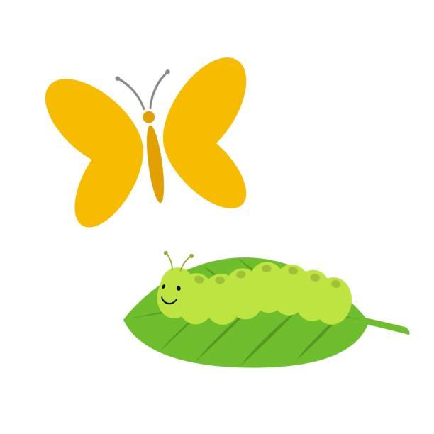 モンシロチョウの幼虫 イラスト素材 Istock