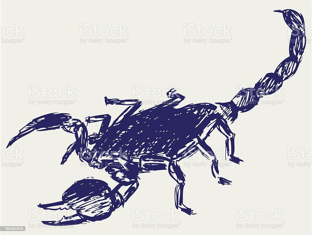 Ilustración de Escorpión Emperador y más banco de imágenes de ...