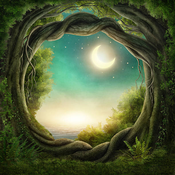 Enchanted dark forest Enchanted dark forest in the moonlight fairy tale stock illustrations