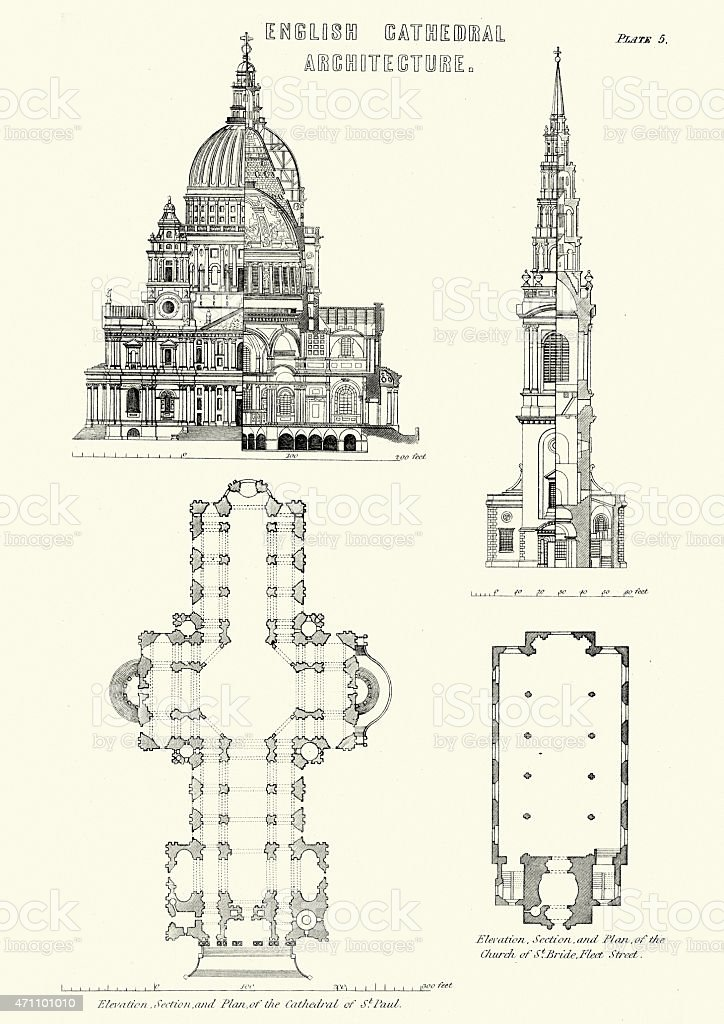 English Cathedral Architecture - Cathedral of St Paul vector art illustration