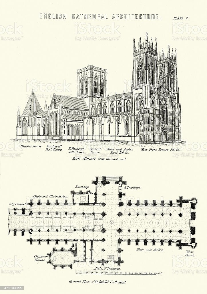 English Cathedral Architecture - York Minsiter and Lichfield Cat vector art illustration