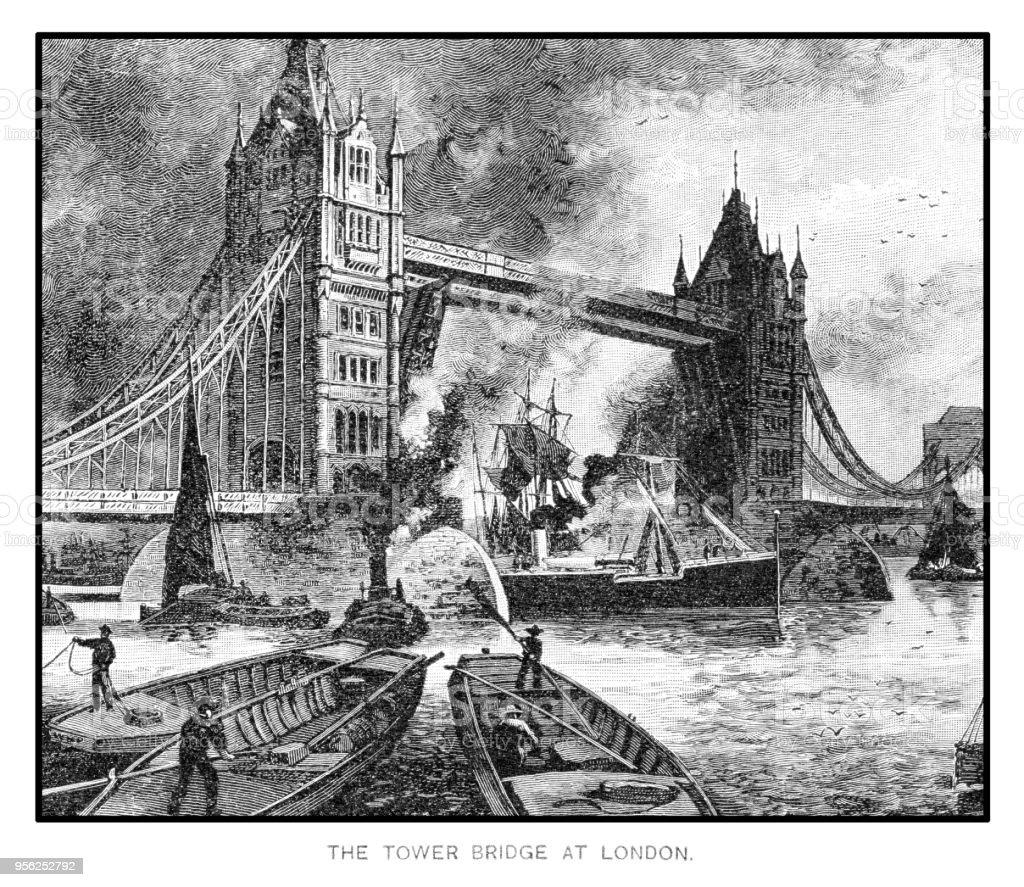 engraving 1895 vector art illustration