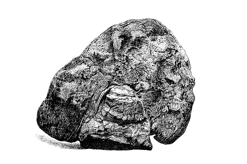 Illustration of a Eozoon canadense is a pseudofossil