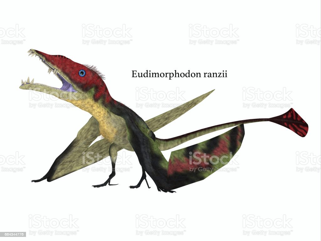 Eudimorphodon Resting with Font stock photo