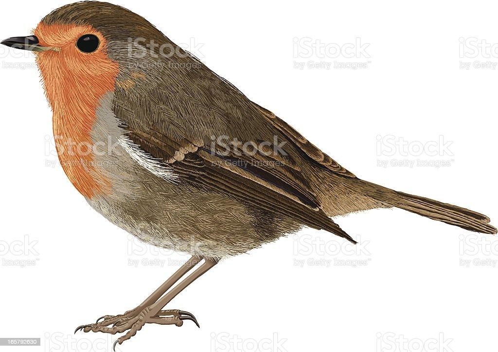 royalty free robin bird clip art  vector images Free at Last Divorce Clip Art Last Supper Free Clip Art