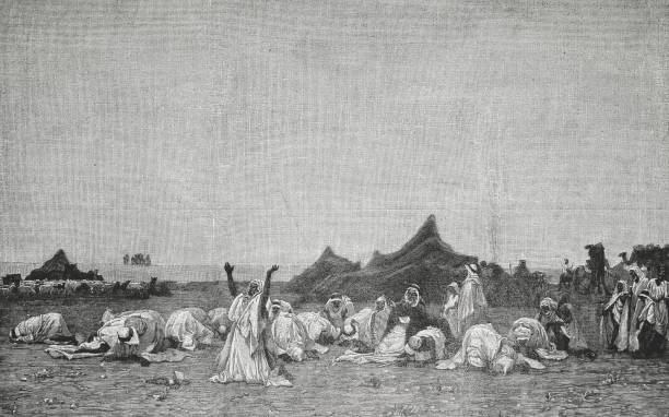 evening prayer in the sahara - illustration from 1894 - bedouin tent stock illustrations, clip art, cartoons, & icons