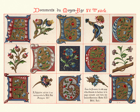 Examples of Medieval decorative art, Capital letters, floral design elements