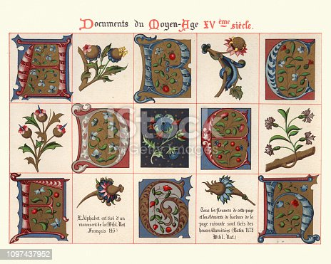 Vintage engraving of Examples of Medieval decorative art from illuminated manuscripts 15th Century. Capital letters and floral design elements