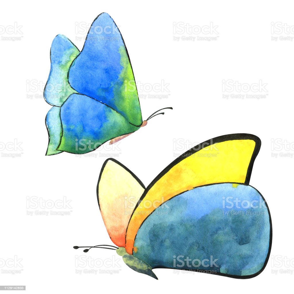 3ad62a2fe64d9 Exotic butterfly wild insect in a watercolor style isolated. Aquarelle wild  insect for background, texture, wrapper pattern or tattoo. - Illustration .