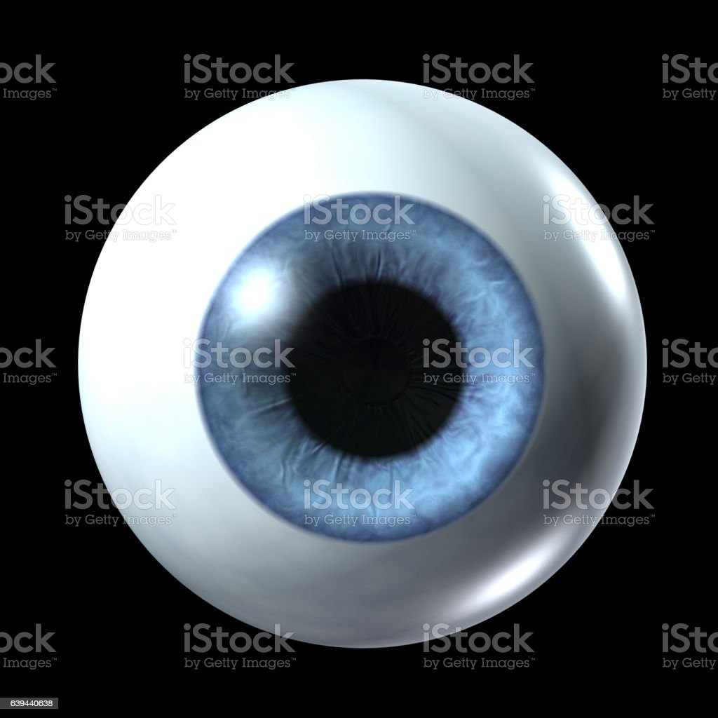 eyeball isolated on a black vector art illustration