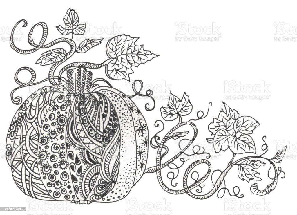 - Fairy Doodle Tungle Pumpkin Black And White Monochrome Background Pumpkin  And Leaves Zentangle Coloring Book Page Stock Illustration - Download Image  Now - IStock