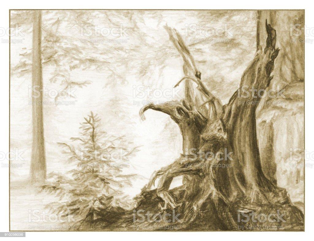 Fairy forest. Sketch illustration vector art illustration