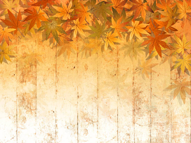 Fall leaves border against wood background in watercolor style - thanksgiving theme Digitally created autumn backdrop with soft texture autumn backgrounds stock illustrations