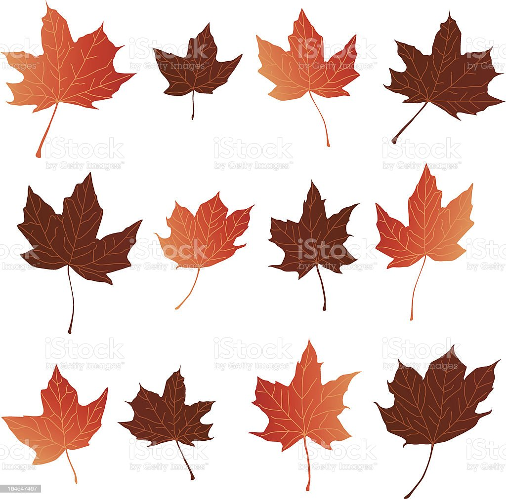 Fall Leaves royalty-free stock vector art