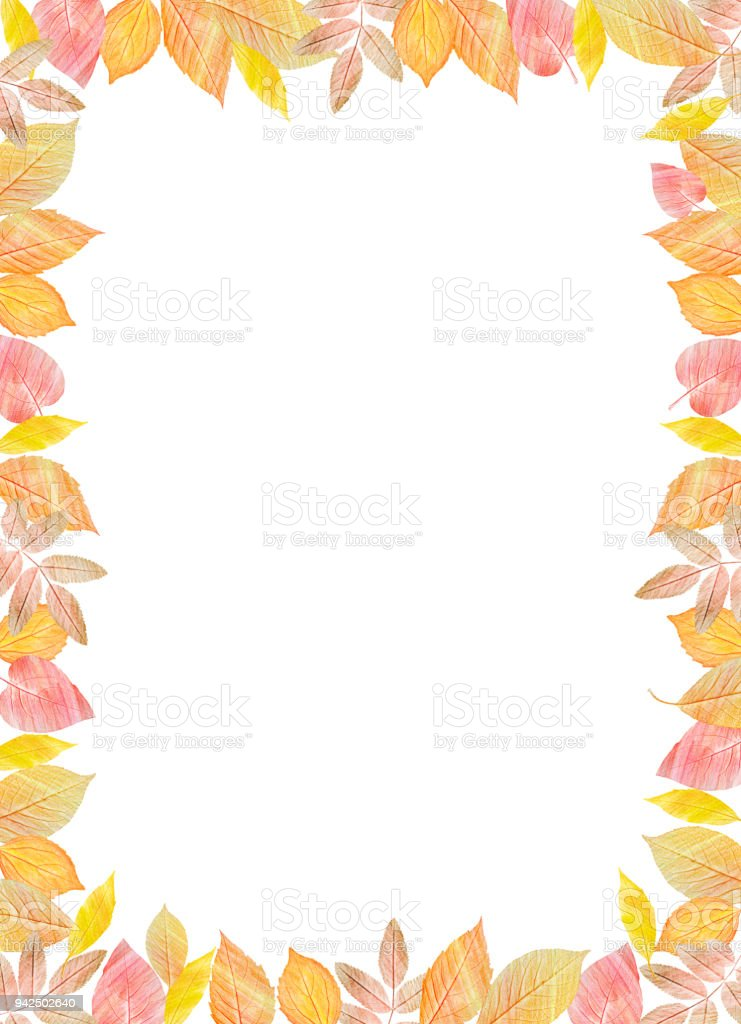 Fall Template. Bright Colourful Autumn Leaves On Vertical White Background.  You Can Place Your