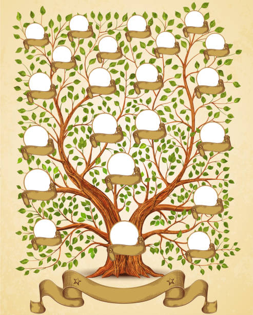 Royalty Free Family Tree Clip Art Vector Images Illustrations
