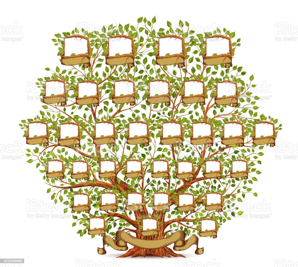 family tree template vintage illustration stock vector art more