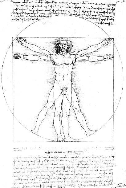 A famous artistic picture symbolic of human anatomy  Anatomy art by Leonardo Da Vinci from 1492 biomedical illustration stock illustrations
