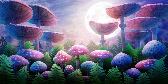 fantastic wonderland landscape with mushrooms and moon