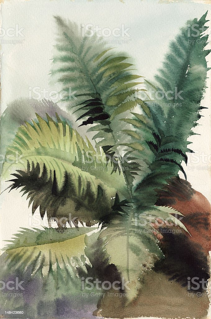 Fern royalty-free fern stock vector art & more images of art