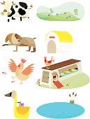 farm animal and home