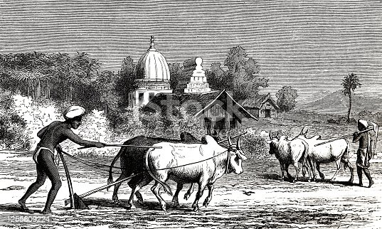 Illustration from 19th century