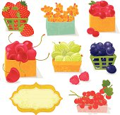 """Farmer's berries.  (strawberry,gooseberry,blueberry,cherry,Raspberry,sea buck thorn, red currant). Vector. EPS 8."""
