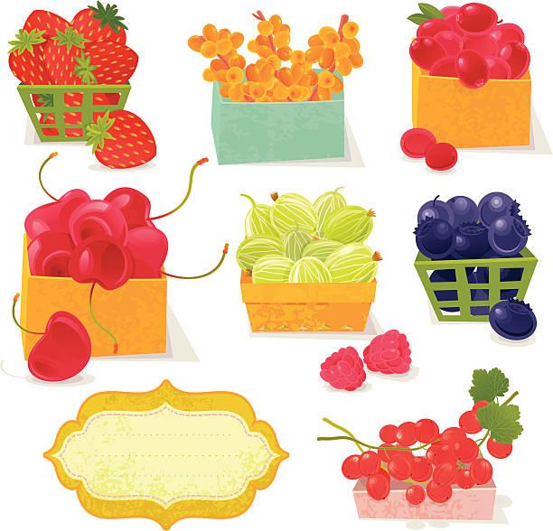 Farmer's Berries vector art illustration