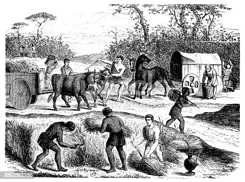 Illustration of a Farming and farmers in antique Rome
