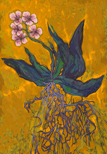 Fashionable illustration modern art work allegory my original oil painting impressionism fantasy still life blooming light pink orchid with leaves and flowers and roots on a rich yellow mustard background