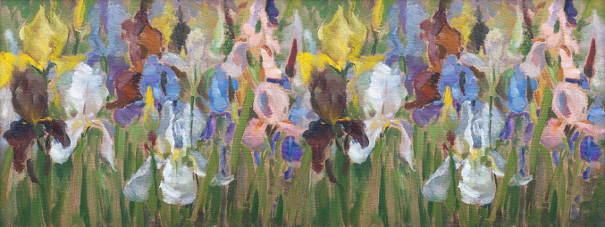 Fashionable illustration modern art work my original oil painting on canvas impressionism horizontal landscape sunlit spring flowers irises white pink purple yellow blooming on a  green flowerbed against the background of leaves of buds of grass green