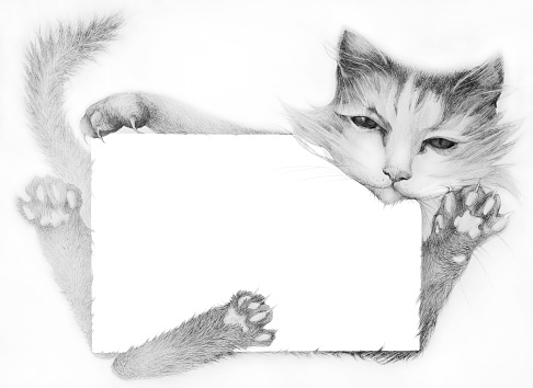 Fashionable illustration modern work of art my original horizontal pencil drawing on paper author's postcard kitty holds in its paws a holiday congratulation letter on a white paper background