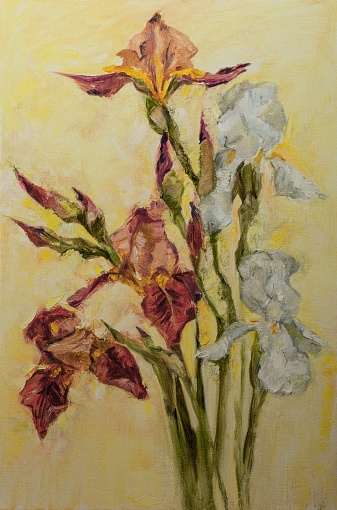 Fashionable spring illustration allegory modern artwork impressionism my original oil painting on canvas impressionism vertical shaped symbolic landscape blooming white and red irises in the rays of sunlight on a light beige yellowish sunny background