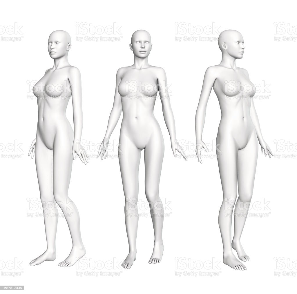 Female Anatomy Figure Stock Vector Art & More Images of Anatomy ...