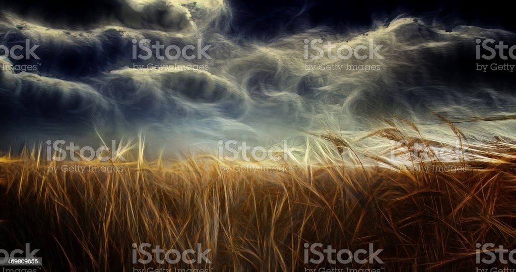 Field and Sky vector art illustration