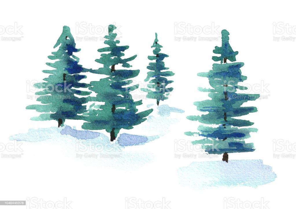モミの木水彩の手描きイラスト白い背景で隔離 アメリカ合衆国の