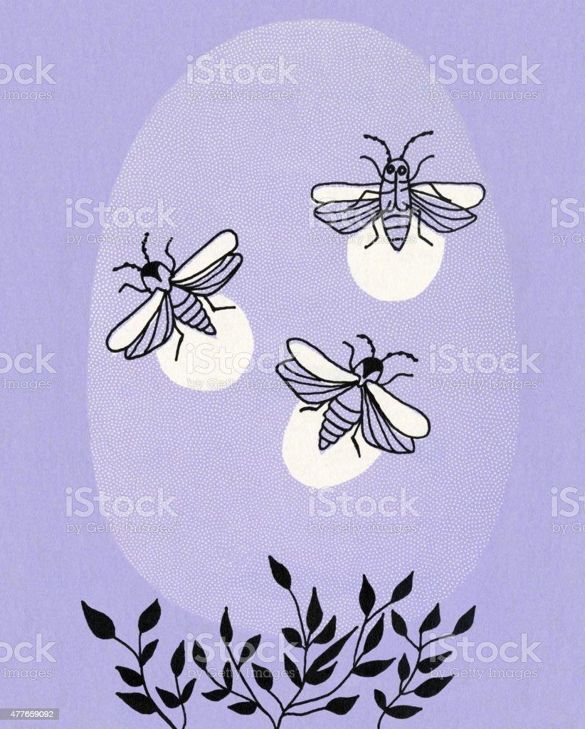 Fireflies vector art illustration