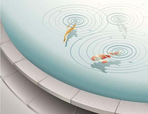 Fish in fountain pool