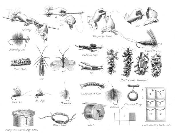 Fish snap hooks engraving 1812 vector art illustration