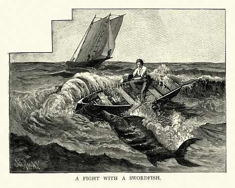 Vintage illustration of a Henry Cheesebro a fisherman fighting a 338-pound swordfish of Stonington, Connecticut, 1893, 19th Century